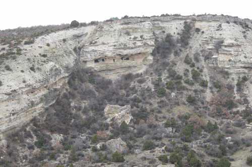 Bagozu