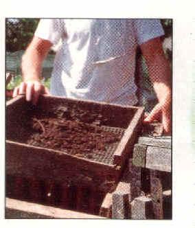 compost-8b