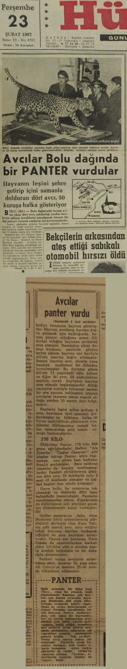 Panter gazete
