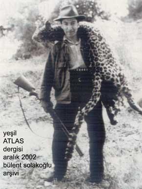 panther hunter